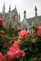 The Earth is full of His glory... (r_spin) Tags: flowers newzealand roses church otago