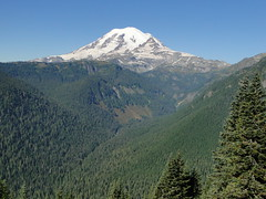 Rainier from rock spot on Shriner Peak trail.