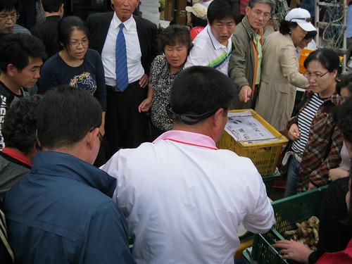 Uljin Songi Festival