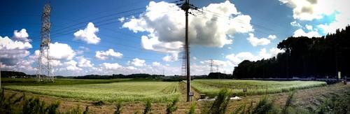 蕎麦畑パノラマ