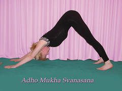 Adho Mukha Svanasana a