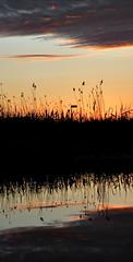 Double sunset (gertipetersen -is like a flashlight ....on...off..) Tags: sunset sky water zonsondergang lucht danmark stad reflectie sjlland spjellerup