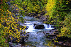 Autumn Serenity (Philip Kuntz) Tags: autumn colors washington explore metalinefalls sullivancreek