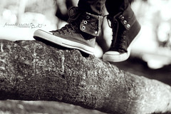 Bench converse Monday (f. prestes) Tags: wood light blackandwhite bw tree feet luz contrast 50mm shoes bokeh pb converse contraste ps f18 tronco rvore pretoebranco allstar chucks tnis hbm benchmonday