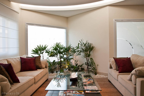 eco-friendly living space