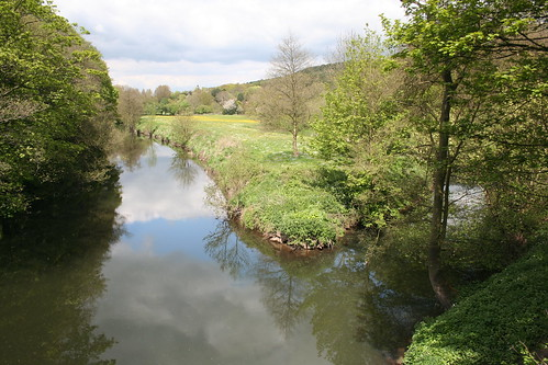 Cromford Canal III ~ 9th May 2010