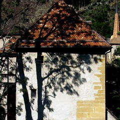 tree shadow (overthemoon) Tags: roof shadow tree square schweiz switzerland rooftops suisse medieval spire tiles utata svizzera middleages picnik vaud moyenge romandie prieur romainmtier abbeychurch utata:project=shadow