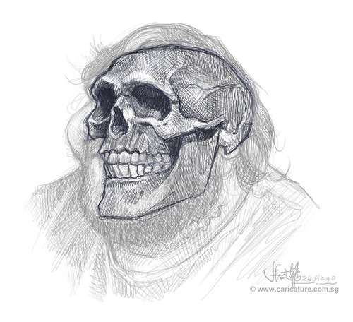 Schoolism Assignment 6 - sketch 2 of Hugo skull