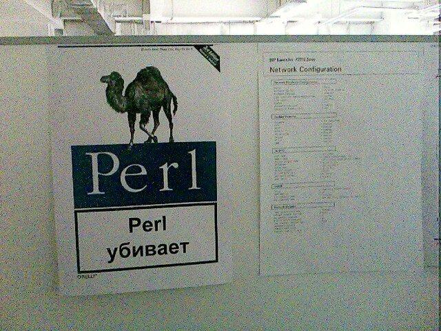 perl kills