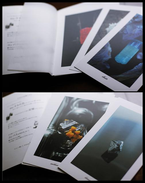 「主なき庭」 - Masterless Garden publishe by Kohitujisya