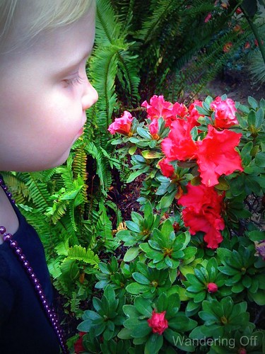 Smelling the flowers at Hotel del Coronado