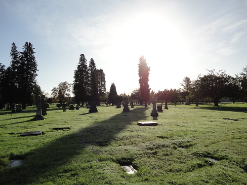 Sunlight over cemetery