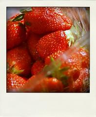 dom dyra jordgubbarna-pola