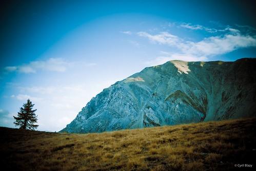 Blue Montagne