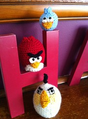Angry bird family grows