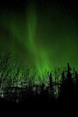 "_DSC6079 f cc ""northern warmth""    6.8k (ChanHawkins) Tags: light national geographic northernlights auroraborealis nationalgeographic thebestofday gününeniyisi gününeniyisithebestofday ""flickraward"" ""flickraward5"" ""flickrawardgallery"" northernwarmth chanhawkins"
