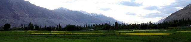 nubra ladakh