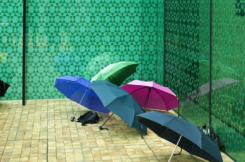 Rietberg-Regenschirme