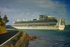First Passenger Ship Visit for the Season (_setev) Tags: cruise newzealand vacation holiday ship large tourist stephen otago dunedin passenger murphy setev portchalmers downunderphotos stephenmurphy