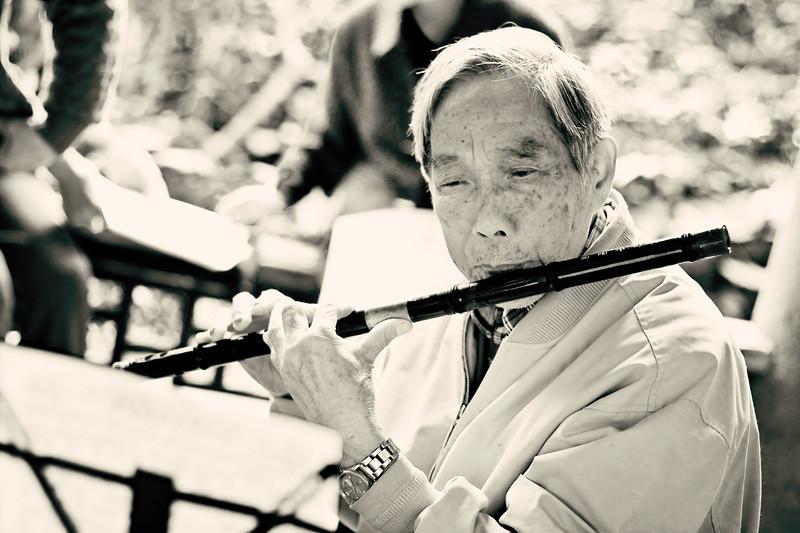 The flute BLOG