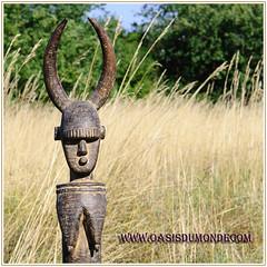 piquet_Bambara (oasisdumonde) Tags: art tribal oasis monde esprit afrique bambara artisanatafricain baoul arttribal artethnique oasisdumonde