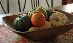 Autumn decorating-winter squash in an antique wooden bread trough (kizilod2) Tags: wood autumn fall pumpkin bowl decorating squash butternutsquash decor wintersquash acornsquash carnivalsquash buttercupsquash