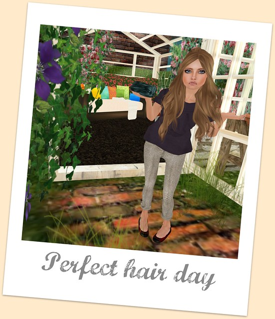 Perfect Hair Day