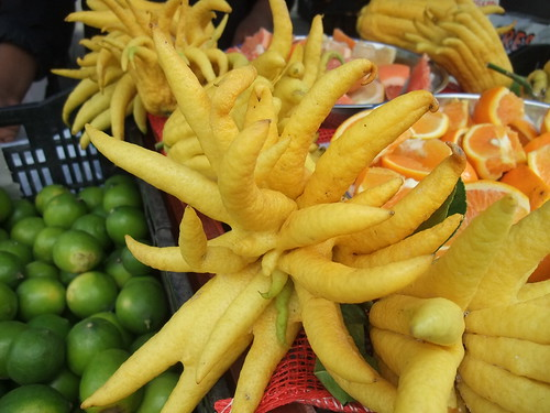 SFO Day 2: Buddha's Hand at the Ferry Plaza Farmers Market