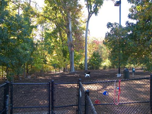 Godbold Dog Park Cary NC
