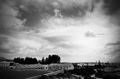 #22 (ong.sherryl) Tags: white black nature 35mm lens landscape photography nikon nikkor fremantle d5000