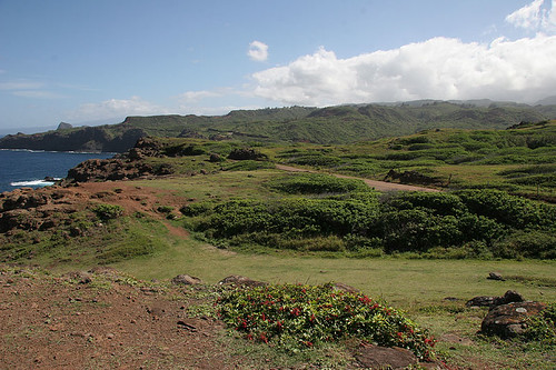 View East from Nakalele Point - Maui