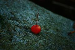 *1* ~ichi~uno~eins~un~one~ *1* (Captain Creepy) Tags: stone cherry loneliness granite singularity oneness onan