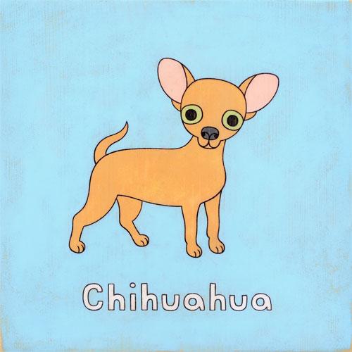 chihuahuaweb