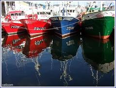 Puerto de Burela (celicom) Tags: mar galicia reflexions pesca lugo reflejos cerco ollodomar agarimodous marcialitoquinto puertoburela nuevocristobuenviaje