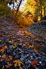Autumn`s Colors - رنگهای پاییز (Mostafa Karimi) Tags: autumn hdr مشهد پاییز طرقبه autumnhdr خراسان کلاته kalatehahan کلاتهآهن
