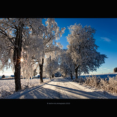 Winter IS Here! (stella-mia) Tags: road blue winter shadow sun white snow cold norway frost shadows explore lensflare snowing frigid vei frontpage sunnyday sn snowroad 2470mm  winterroad canon5dmkii veslelien  snvei annakrmcke