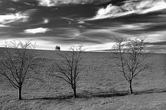 the nature is ready for the winter (claude05) Tags: autumn bw walker ambler kartpostal challengeyouwinner freiamtottoschwanden kuriseck