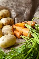 Garden Produce (menickstephensorg) Tags: orange brown green bag potato carrot sack canonef2470mmf28lusm carrottop hessian marispiper canoneos5dmk2