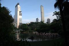Kowloon Park met flamingo's