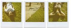midnight bycicle mistery (kero__) Tags: green analog polaroid ishootfilm stick brussel kero polaroid635cl savepolaroid panpola impossibleproject midnightbyciclemistery