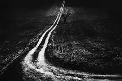 White path on black field (Effe.Effe) Tags: bw monochrome bn tribute