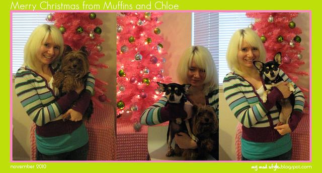 Muffins, Chloe & Me - Nov 2010