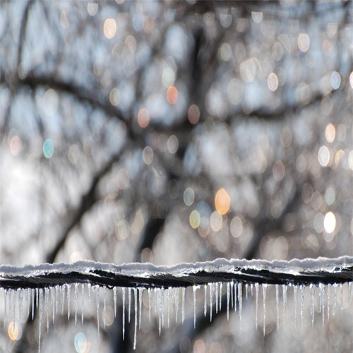 icicle photograph