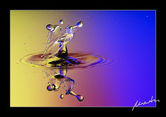 animal head (tropfenkunst) Tags: sculpture art water wasser mario drop splash waterdrops liquid highspeed tropfen dropart tumm tropfenkunst