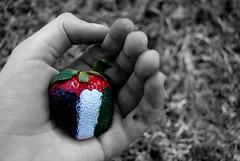 UAE ~  $trawberry (.ღ♫°Qanas°♫ღ.) Tags: strawberry nikon december day hand unique flag uae national 39 2010 qanas
