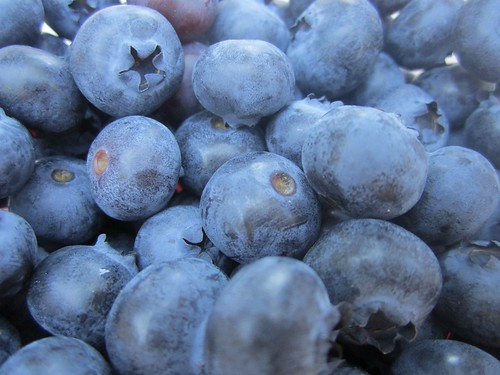 Blueberries fresh from our garden