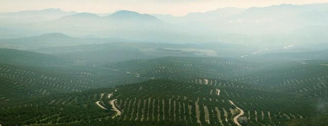 By los cerros de Úbeda, Jaen