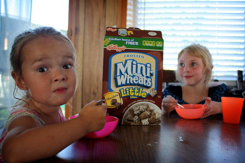 mini cereal for mini people