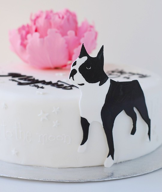Margaret's Birthday cake - big dog