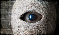 blue pearl eye (marianna a.) Tags: blue macro reflection eye texture photoshop lumix interesting shiny grunge smooth indigo shell panasonic explore fabric g1 pearl unusual rough nut woven weave pearly photocollage mondays marianna combination textured porous layered armata explored microfourthirds lumixg1 mariannaarmata